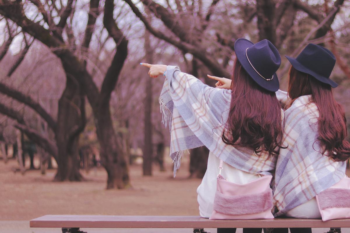 f:id:yuzubaferret:20191111114829j:plain