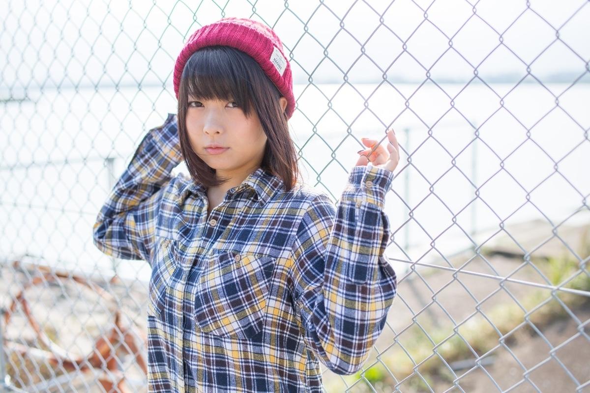 f:id:yuzubaferret:20191122134409j:plain