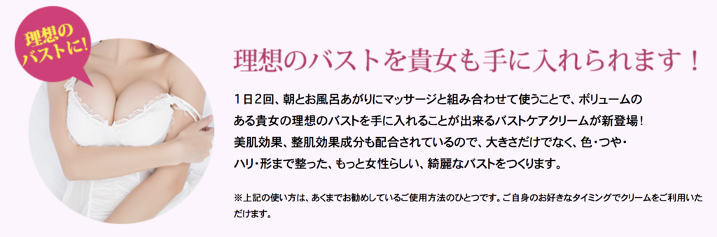 f:id:yuzubaferret:20191125220940p:plain