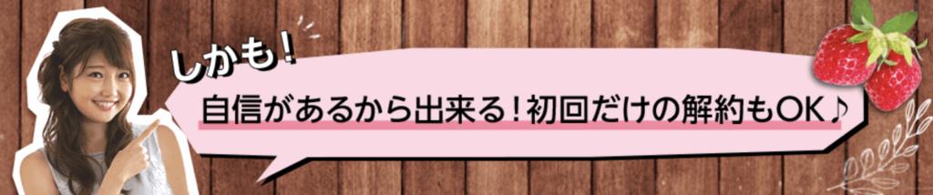 f:id:yuzubaferret:20191211142014p:plain