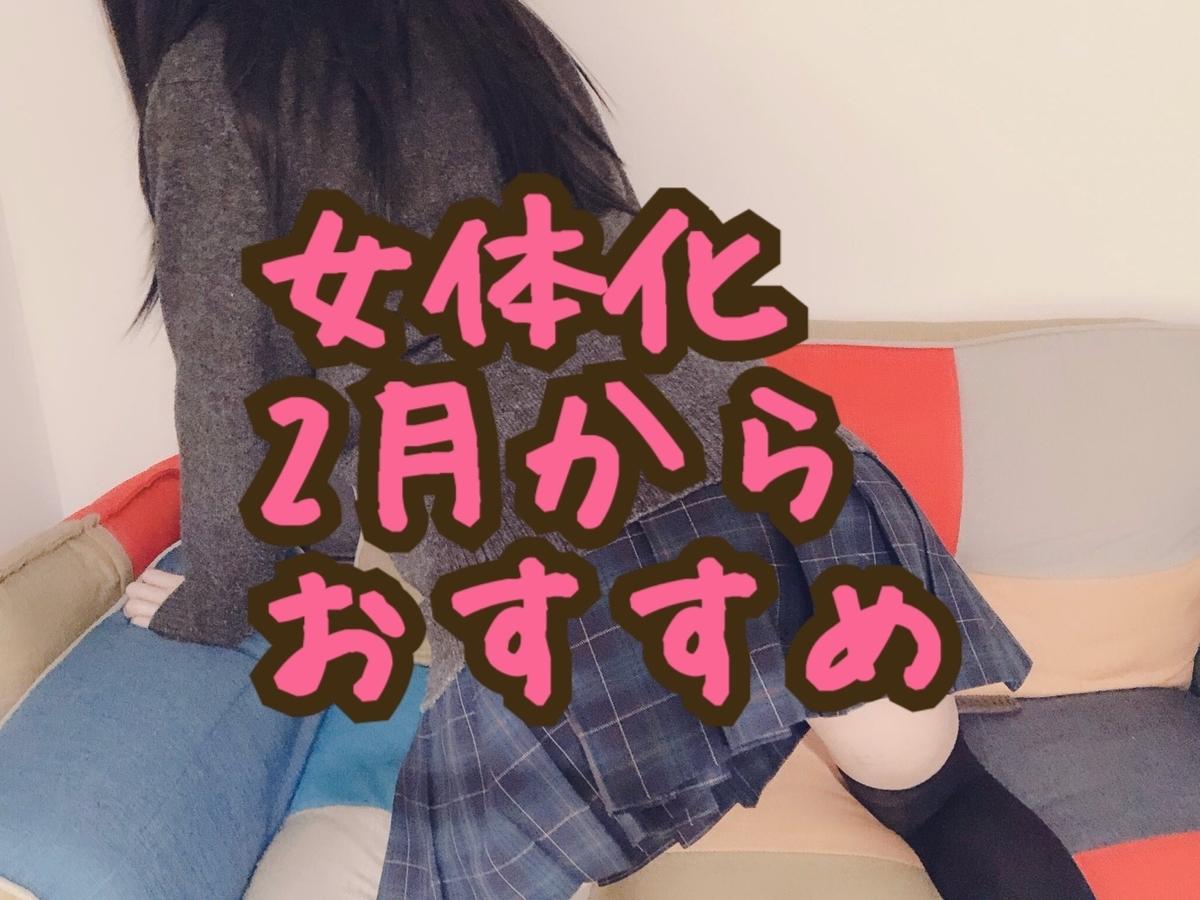 f:id:yuzubaferret:20200120223521j:plain