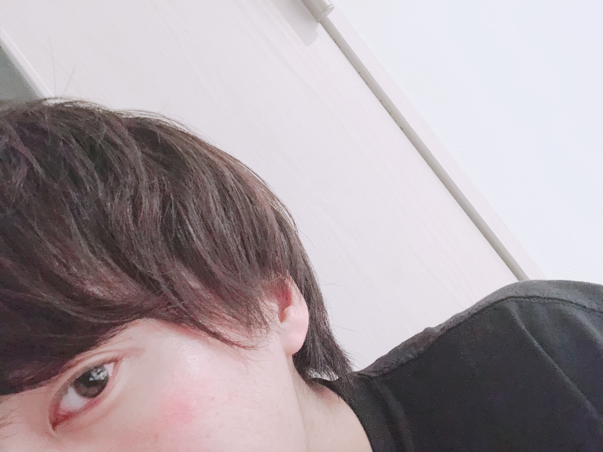 f:id:yuzubaferret:20200203174155j:plain