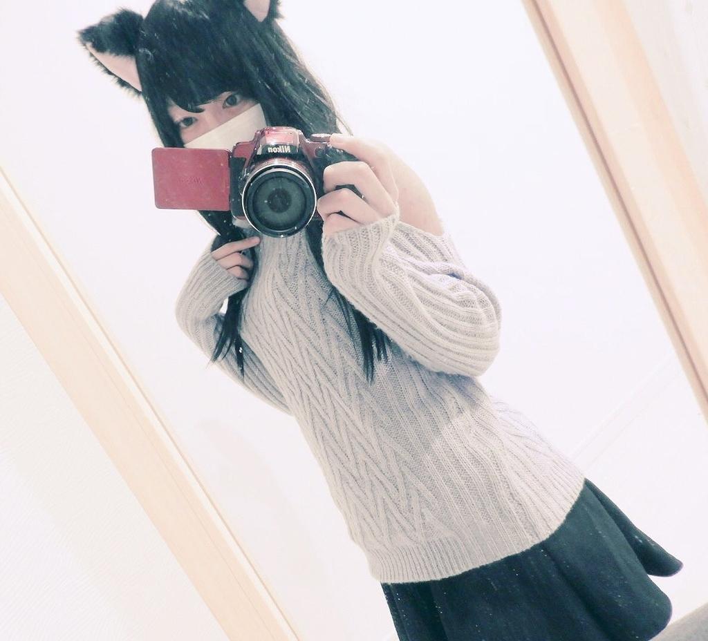 f:id:yuzubaferret:20200204154947j:plain
