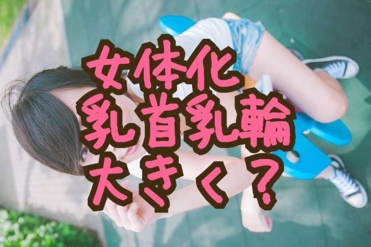 f:id:yuzubaferret:20200214194211j:plain