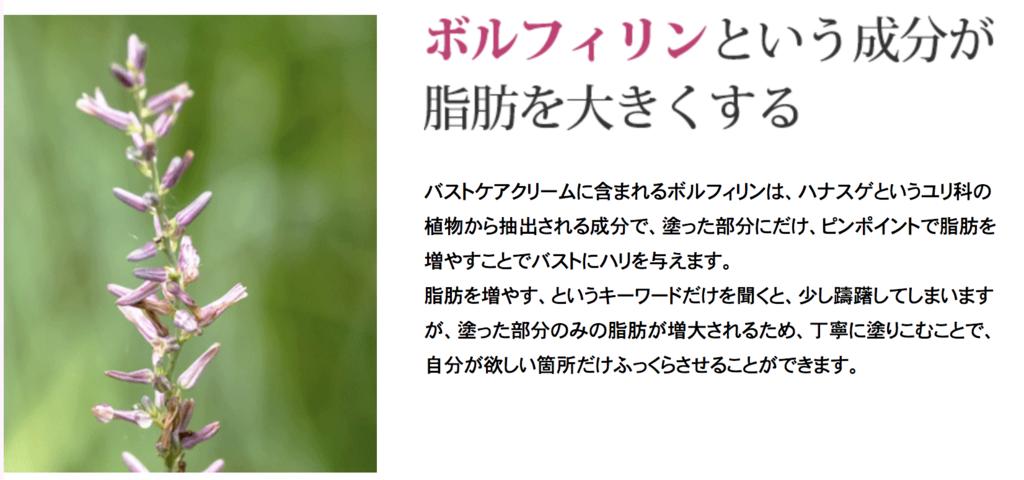 f:id:yuzubaferret:20200225163203p:plain