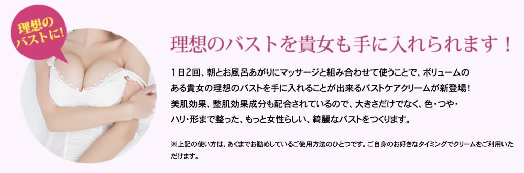 f:id:yuzubaferret:20200227153244p:plain