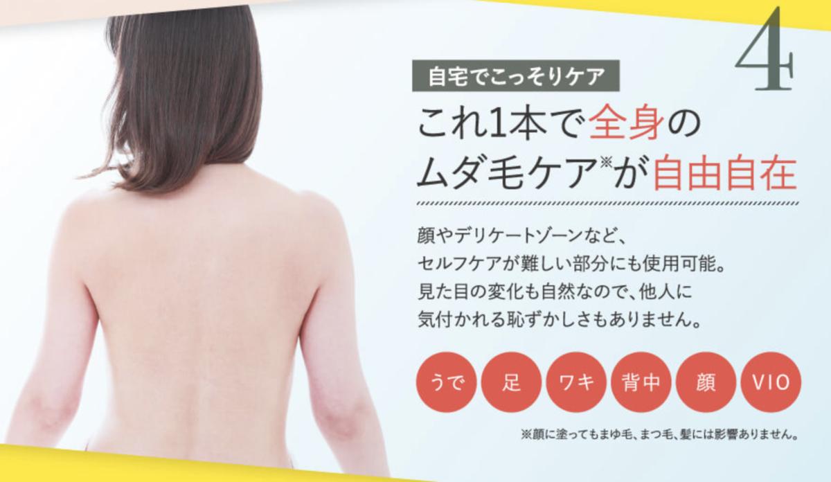 f:id:yuzubaferret:20200514144727p:plain