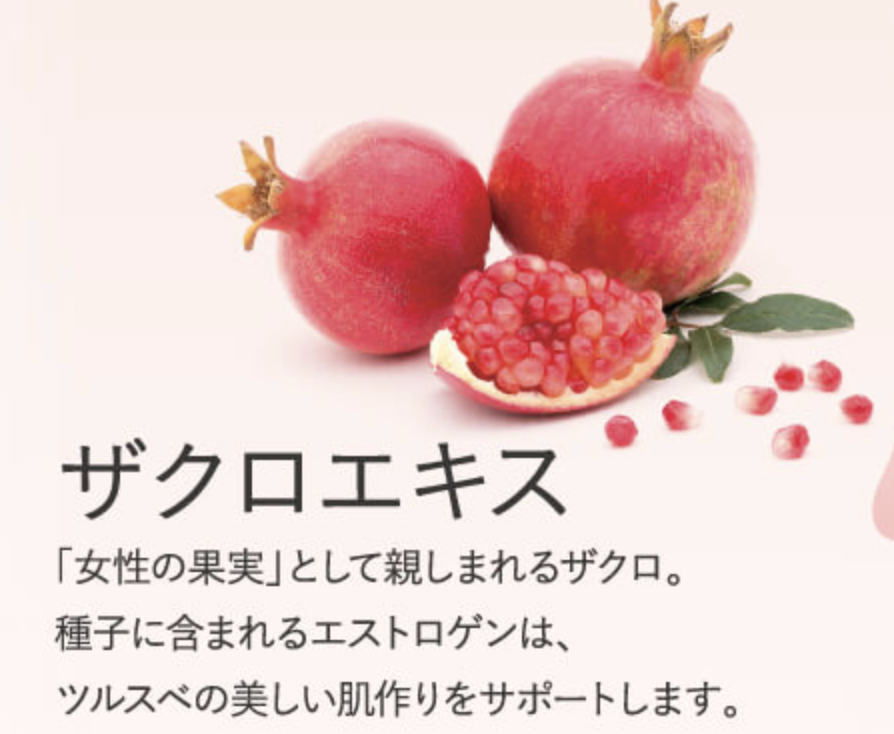 f:id:yuzubaferret:20200514145739p:plain