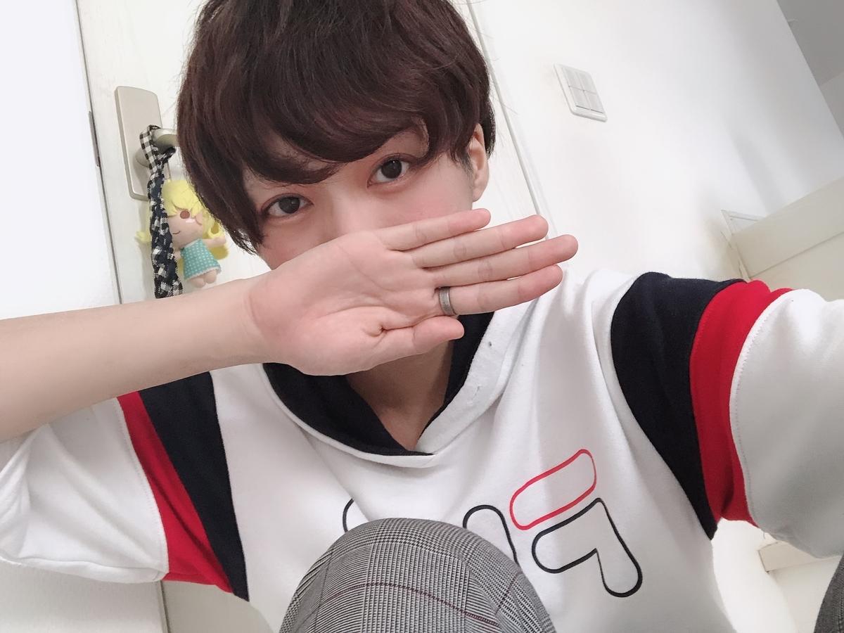 f:id:yuzubaferret:20200806150027j:plain