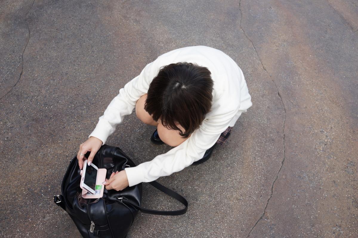 f:id:yuzubaferret:20200810154519j:plain