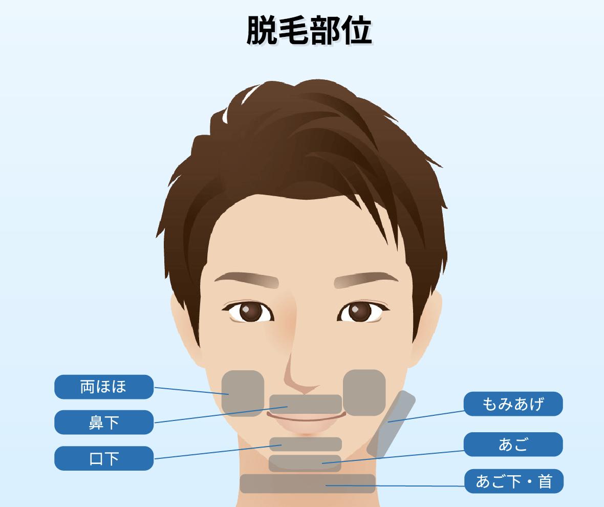 f:id:yuzubaferret:20200814235030p:plain