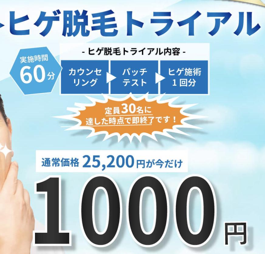 f:id:yuzubaferret:20200814235146p:plain