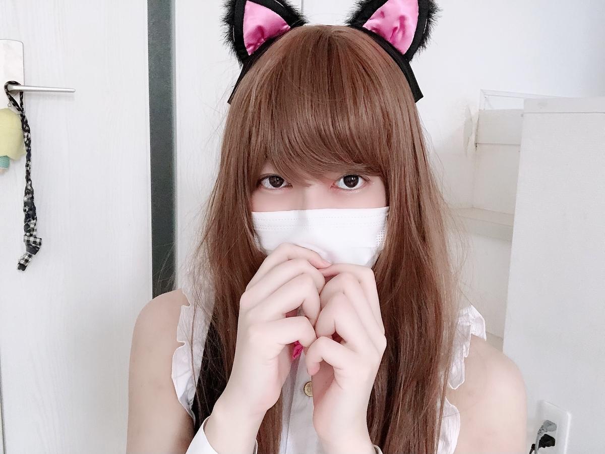 f:id:yuzubaferret:20200918165002j:plain