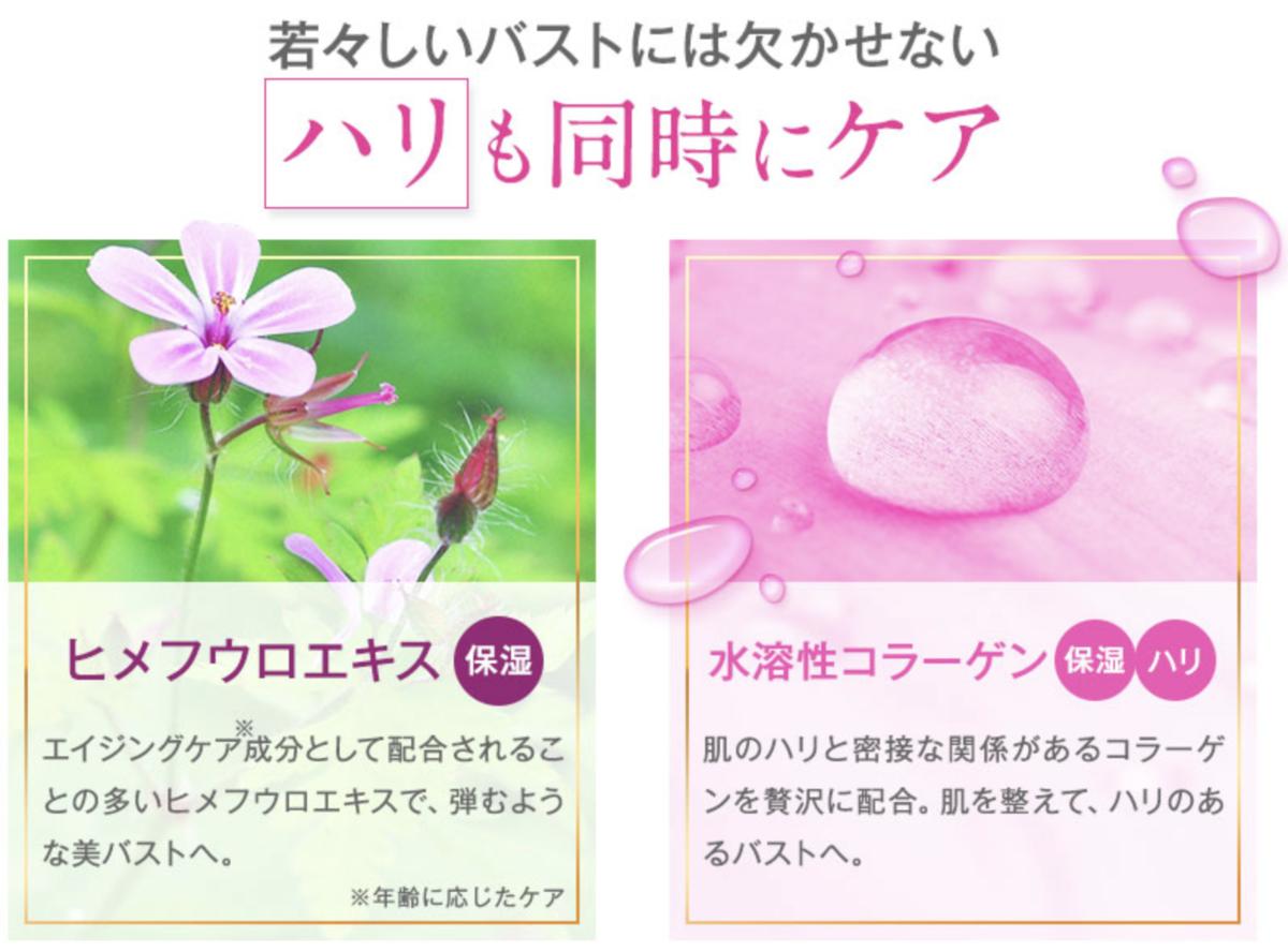 f:id:yuzubaferret:20201010124456p:plain