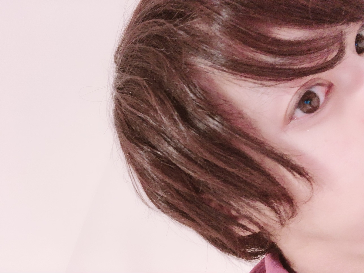 f:id:yuzubaferret:20201129191923j:plain