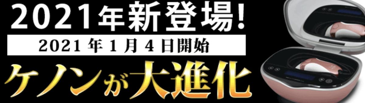 f:id:yuzubaferret:20210120170651p:plain