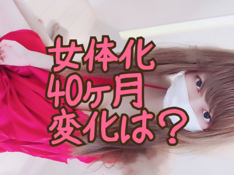 f:id:yuzubaferret:20210126164704j:plain