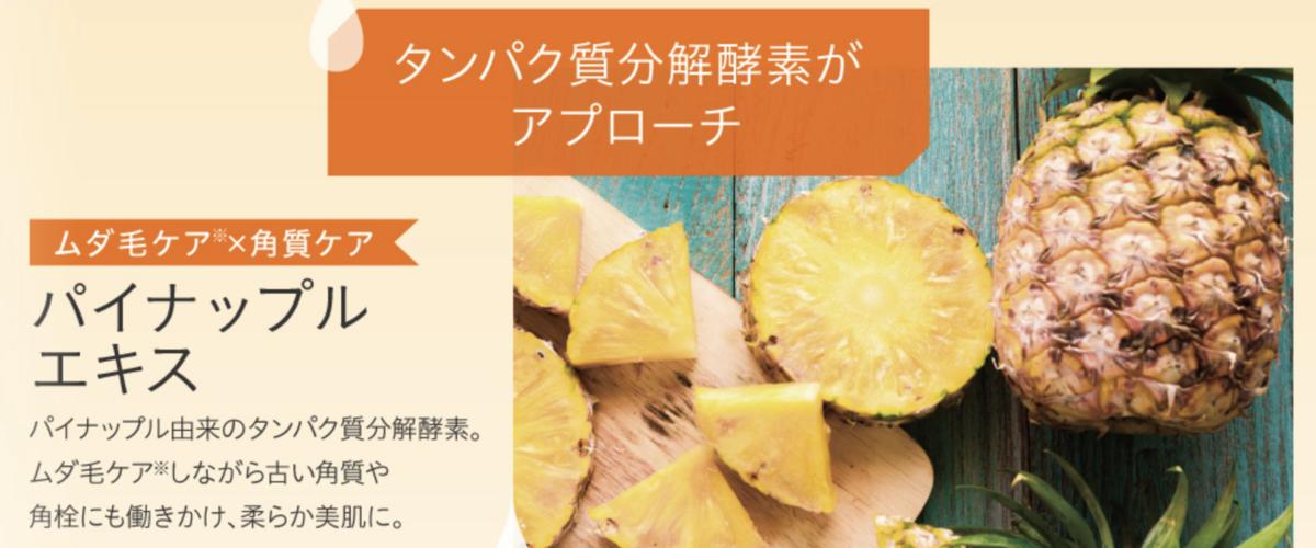 f:id:yuzubaferret:20210127165044p:plain
