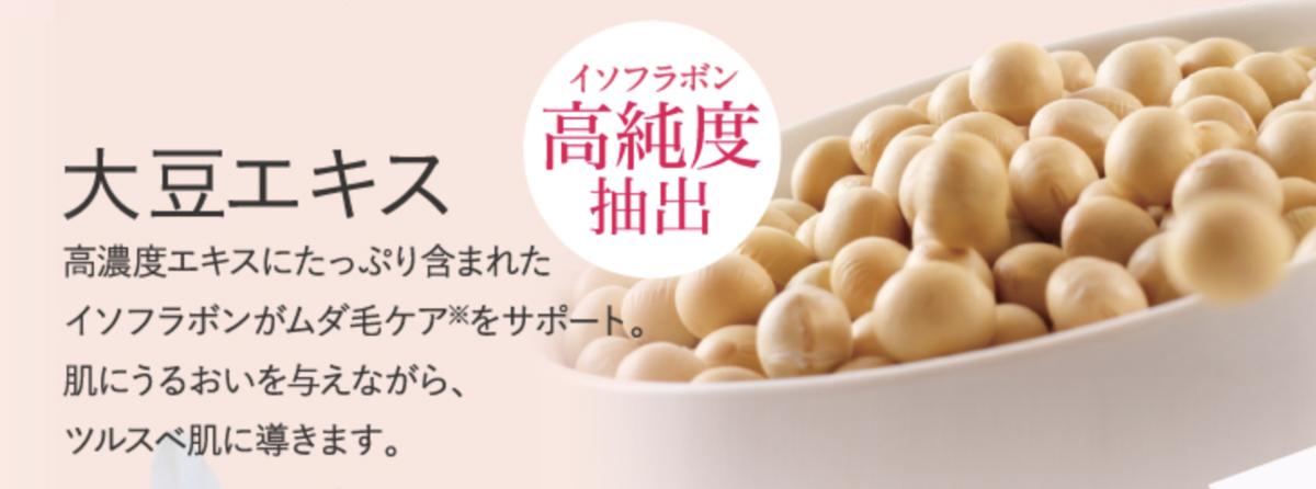 f:id:yuzubaferret:20210127165316p:plain