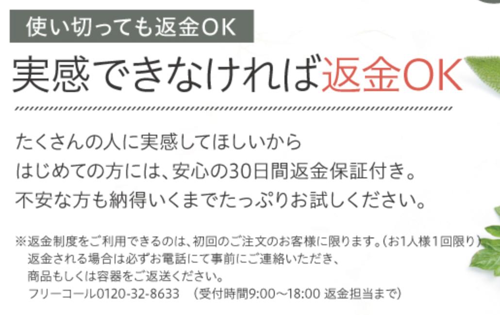 f:id:yuzubaferret:20210128152838p:plain
