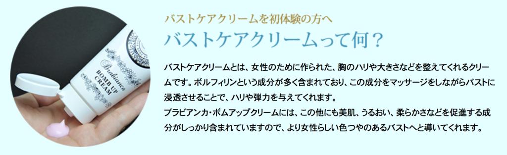 f:id:yuzubaferret:20210130141426p:plain