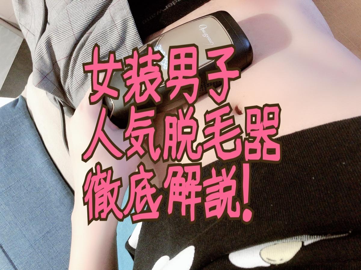 f:id:yuzubaferret:20210201195626j:plain