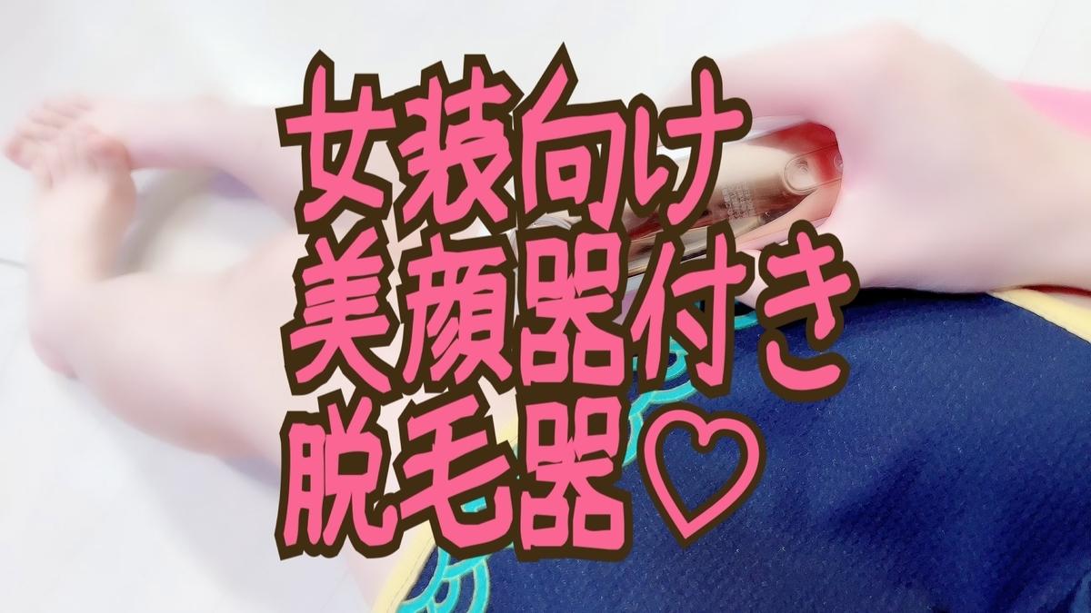 f:id:yuzubaferret:20210304153808j:plain