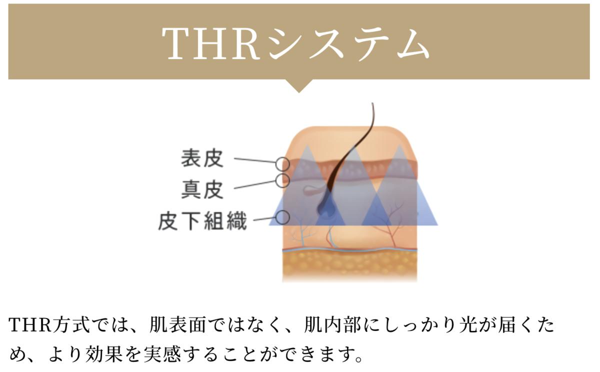 f:id:yuzubaferret:20210304201143p:plain