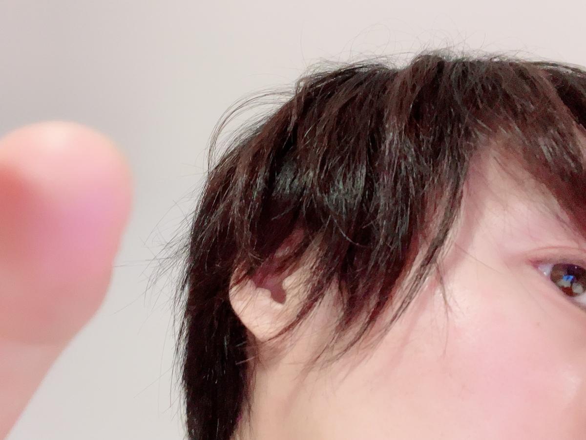 f:id:yuzubaferret:20210404174242j:plain
