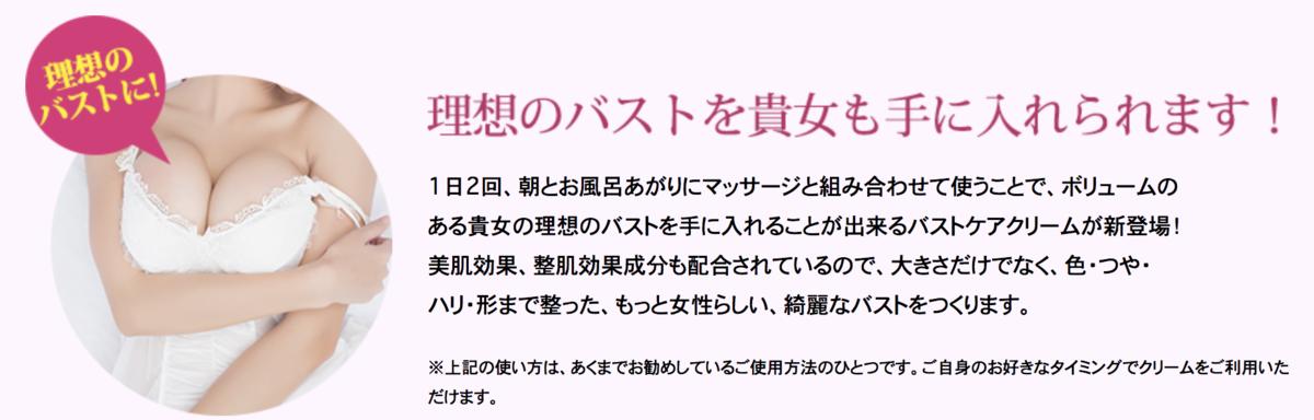 f:id:yuzubaferret:20210411194751p:plain