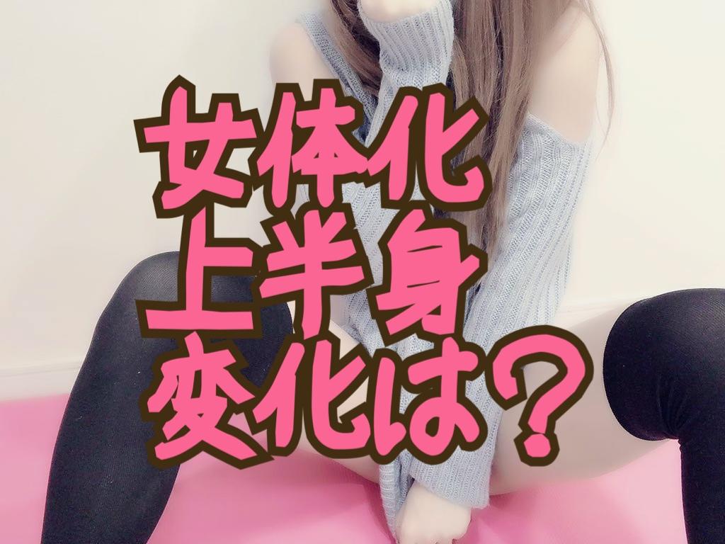 f:id:yuzubaferret:20210528191242j:plain