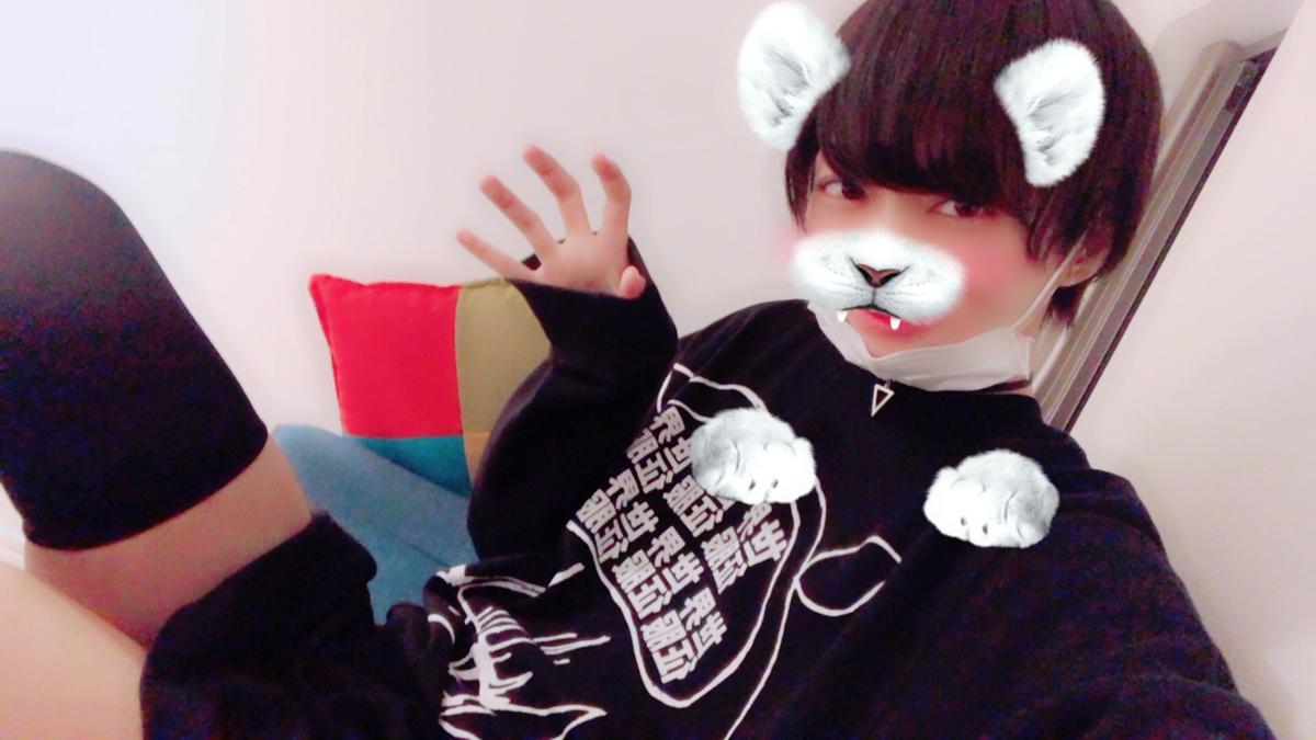 f:id:yuzubaferret:20210704220639j:plain