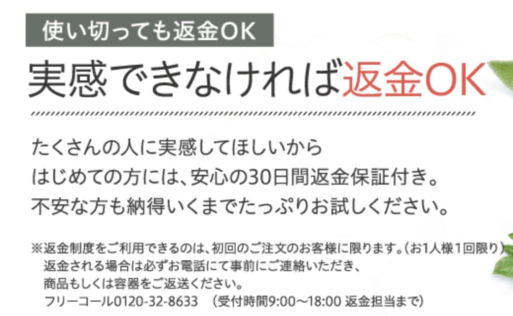 f:id:yuzubaferret:20210817142253p:plain