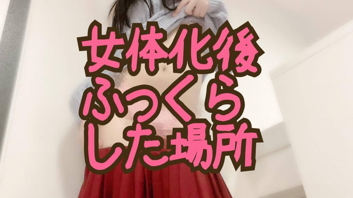 f:id:yuzubaferret:20210906143002j:plain