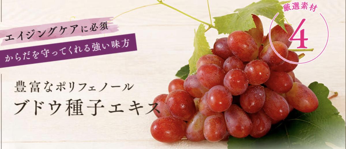 f:id:yuzubaferret:20210914155324p:plain