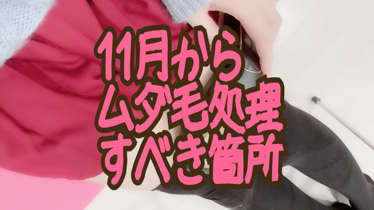 f:id:yuzubaferret:20211012145729j:plain