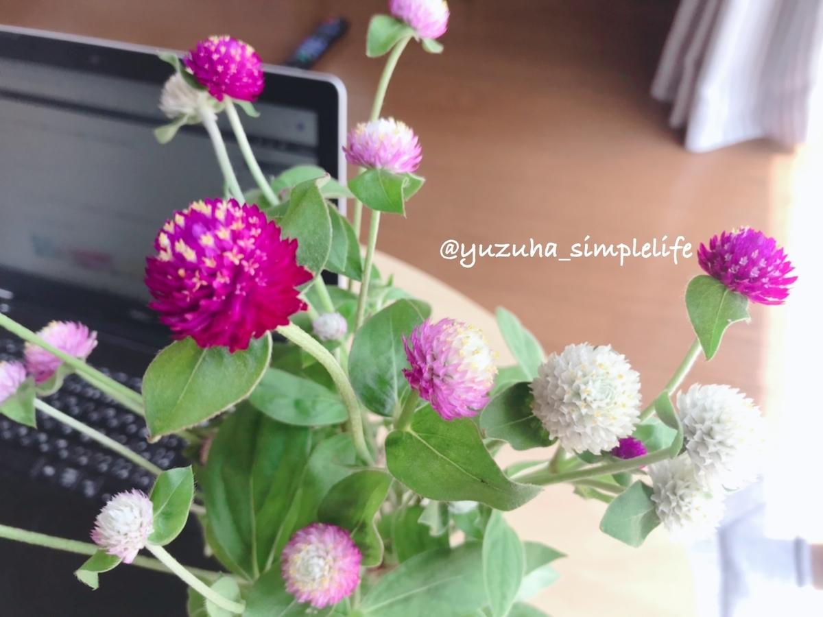 f:id:yuzuha-simplelife:20200822122014j:plain