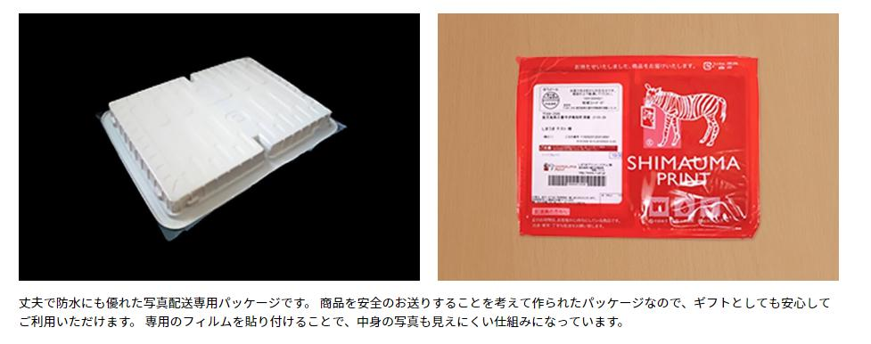 f:id:yuzuhachimitsu:20190228154657j:plain
