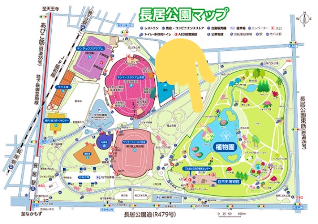 f:id:yuzuhachimitsu:20190625174237j:image