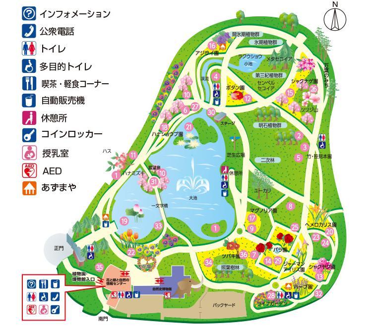 f:id:yuzuhachimitsu:20190625181254j:plain