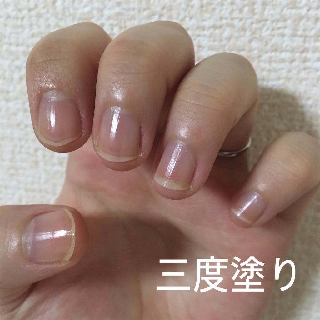 f:id:yuzuhachimitsu:20190702172749j:image