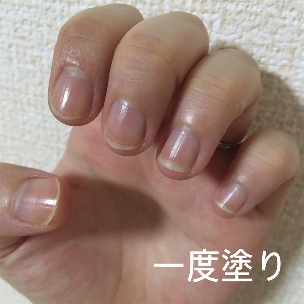 f:id:yuzuhachimitsu:20190702172752j:image