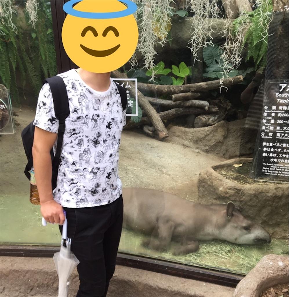 f:id:yuzuhachimitsu:20190710160655j:image