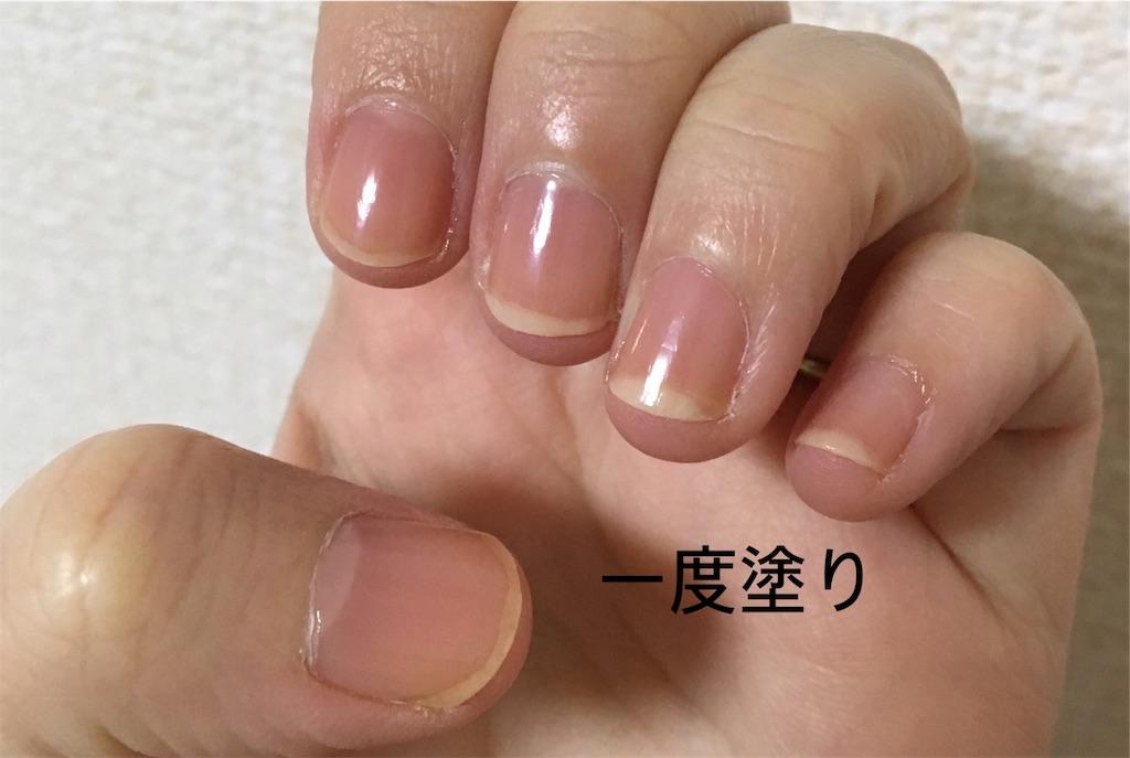 f:id:yuzuhachimitsu:20191105113819j:image