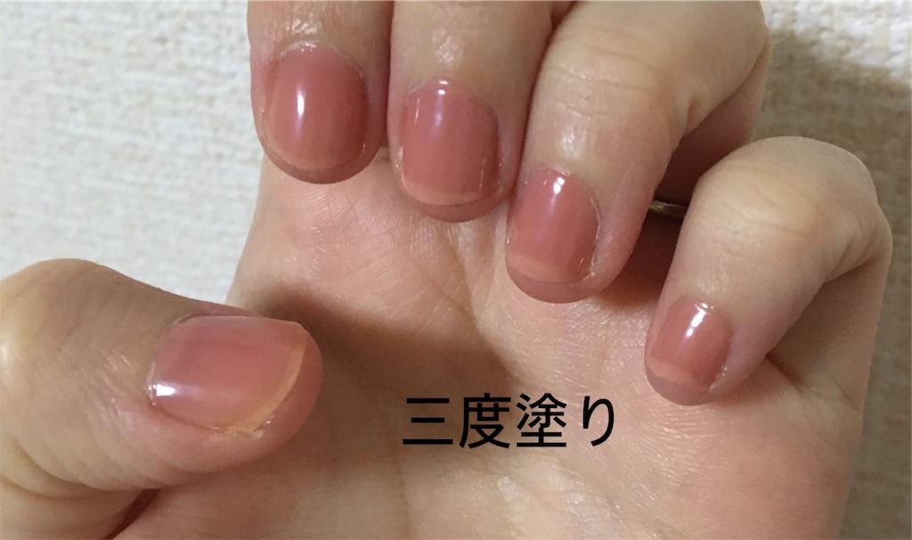 f:id:yuzuhachimitsu:20191105113838j:image