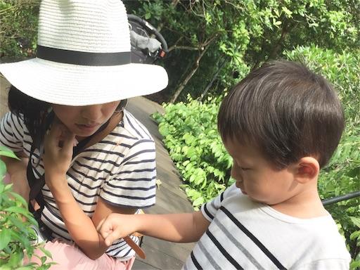 f:id:yuzuka-tani:20171127193310j:image