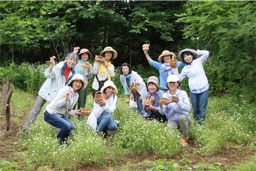 f:id:yuzuka-tani:20180716051251j:image