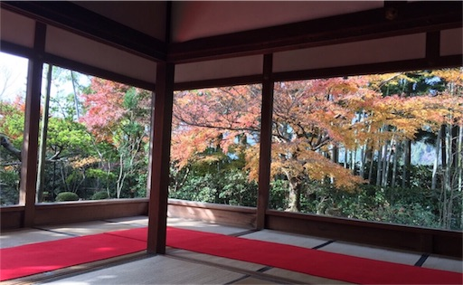 f:id:yuzuka-tani:20181203200042j:image