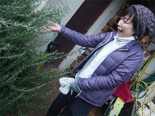 f:id:yuzuka-tani:20200101220555j:image