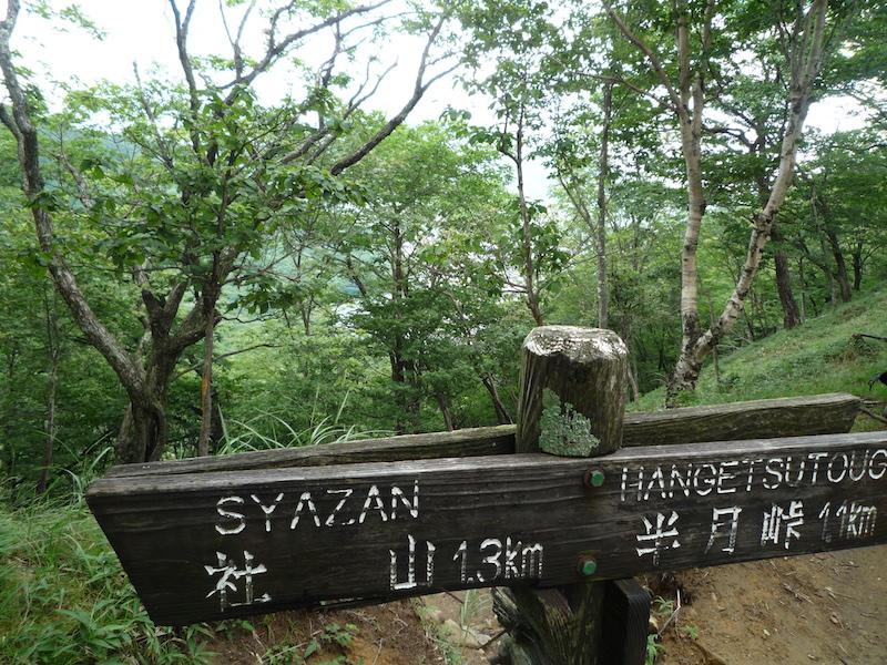 f:id:yuzuki-miki:20180813200112j:plain
